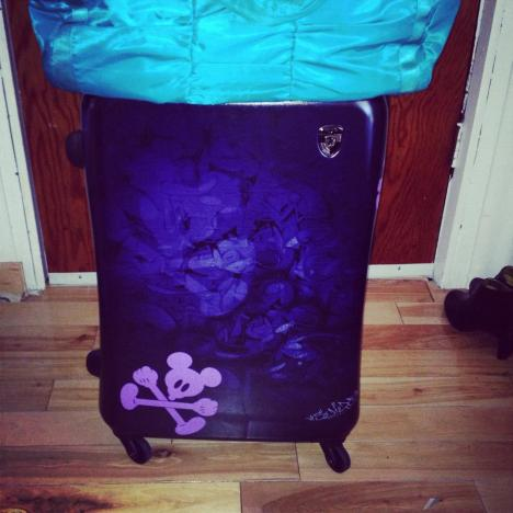 Can you see the faint Mickey image in the dark purple that I copied and added in lilac vinyl to stand out at the airport.